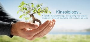 Kinesiology Grand Junction Co 81501. Fibromyalgia, headaches, neck pain, back pain, chronic fatigue.